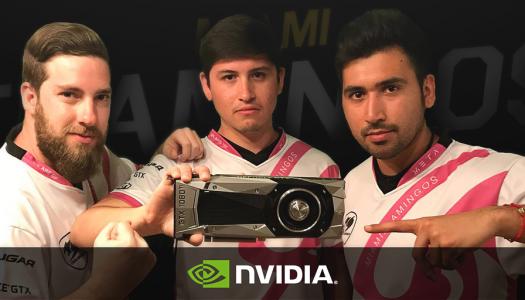 NVIDIA será el nuevo partner de Miami Flamingos
